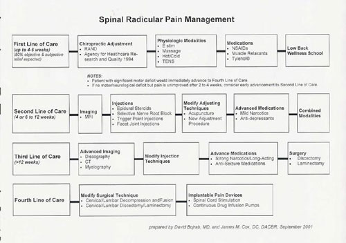 Md dc multidisciplinary care plan cox technic for Pain management templates
