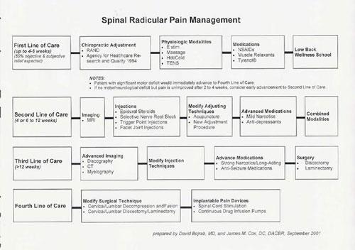 pain management templates - md dc multidisciplinary care plan cox technic